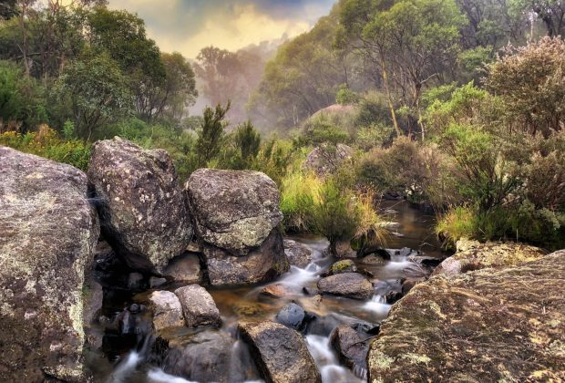 Capture the High Country Photography Weekends